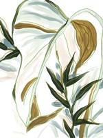 Tropical Impromptu II Framed Print