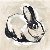 Antique Rabbit I Framed Print
