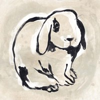 Antique Rabbit III Framed Print