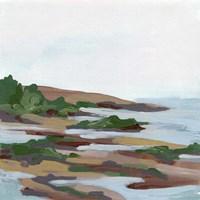 Forest Shore I Framed Print