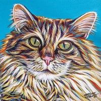 High Society Cat I Framed Print