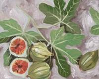 Decorative Fig I Framed Print