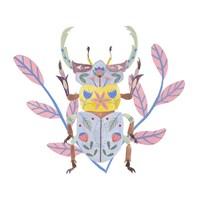 Floral Beetles IV Framed Print
