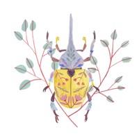 Floral Beetles VI Framed Print