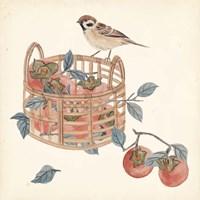Basket with Fruit IV Framed Print