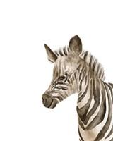 Safari Animal Portraits IV Framed Print