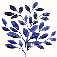 Deep Blue Branch II Framed Print