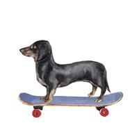 Pups on Wheels II Framed Print