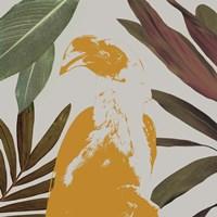 Graphic Tropical Bird II Framed Print