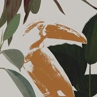Graphic Tropical Bird III Framed Print
