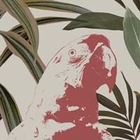 Graphic Tropical Bird IV Framed Print