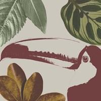 Graphic Tropical Bird V Framed Print