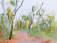 Loop Trail Through Swamp Oak Woodland Fine Art Print