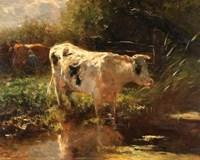 Cow Beside a Ditch, c. 1885-1895 Fine Art Print