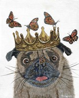 A Crowned Pug Fine Art Print
