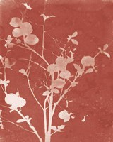 Enchanted Fall Cyanotype VI Framed Print