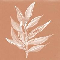 Leaf Study IV Pheasant Framed Print