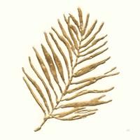 Gilded Palm V Framed Print