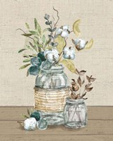 Cotton Bouquet III No Pattern Framed Print