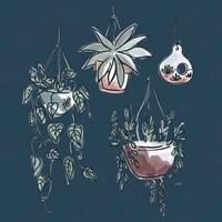 A Plants Life VII Framed Print