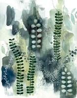 Woodland Walk VI Fine Art Print