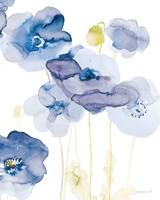 Delicate Poppies II Blue Framed Print