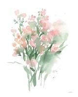 Vibrant Blooms II Framed Print
