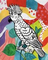 Jungle Cockatoo Framed Print