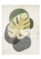 Cabana Palm 2 Framed Print