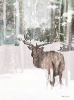 Grand Elk 2 Framed Print
