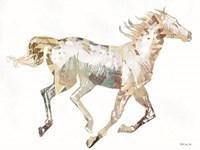 Navajo Horse 1 Framed Print