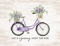 Enjoy the Ride Framed Print