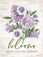 Bloom Where You Are Planted Fine Art Print