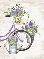 Hyacinth Harvest Fine Art Print