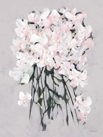 Romantic Floral II Framed Print