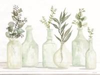 Bottles and Greenery I Framed Print