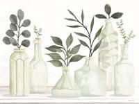Bottles and Greenery II Framed Print