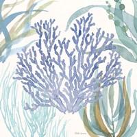 Soft Shores VIII Framed Print