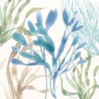 Soft Shores IX Framed Print