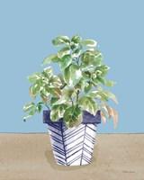 Herb Garden II White Navy Framed Print