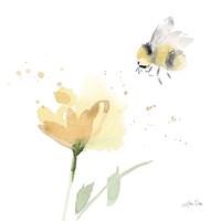 Sunflower Meadow V Framed Print