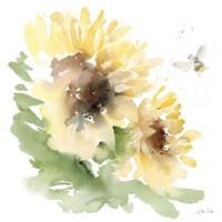Sunflower Meadow II Framed Print