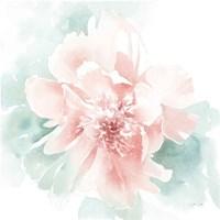 Poetic Blooming II Pink Framed Print