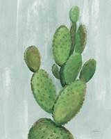 Front Yard Cactus I Slate Framed Print