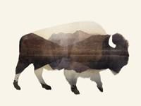 The Wilderness I Framed Print