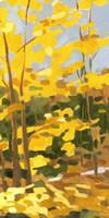 Autumn Hike II Framed Print