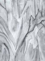 Marbled White II Framed Print