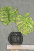 Frond in Vase I Framed Print