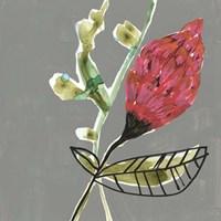 Tropic Botanicals VII Framed Print