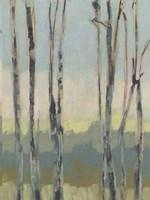 Horizon Through the Trees II Framed Print
